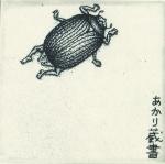 sugimotoakari